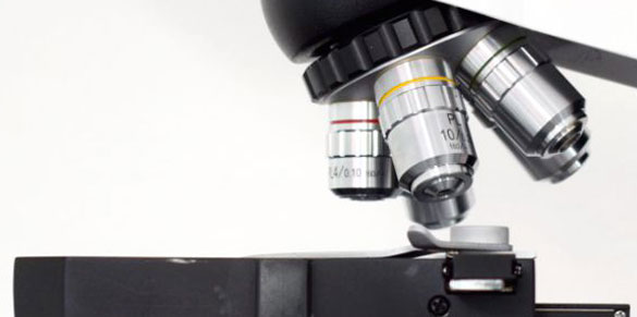 Optical Zoom Lens for Microscope Cameras with 2.5X Objective
